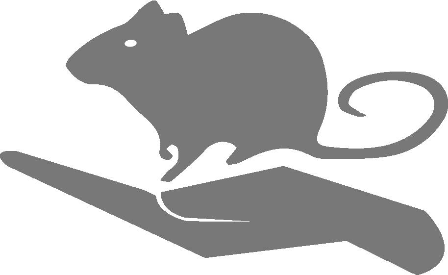 HSBLAS rat vector transparent